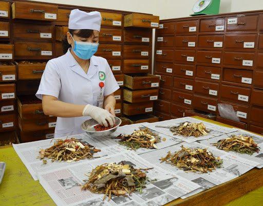 Cây thảo linh chi được xem là một nguồn nguyên liệu chữa được bách bệnh trong Đông Y